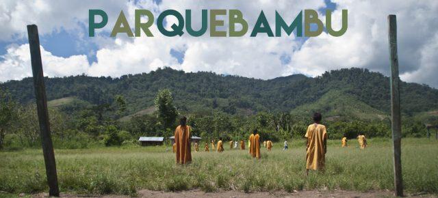 Parquebambu